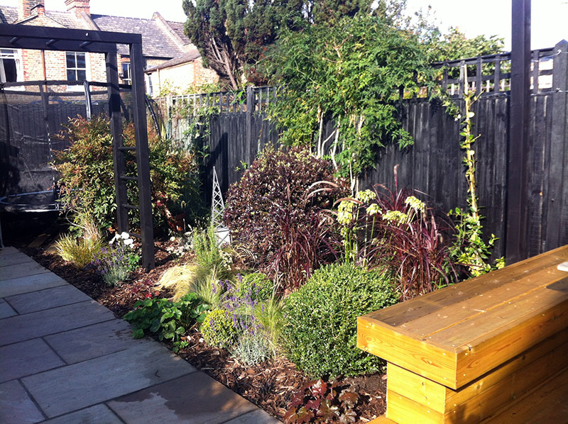 Picture of a contemporary garden in Balham