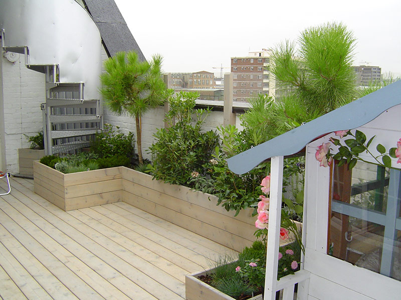 Raised planting beds near steps on roof terrace garden in Mile End